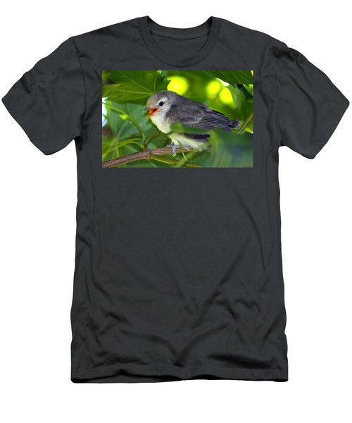 Baby Sparrow In The Maple Tree Men's T-Shirt (Athletic Fit)