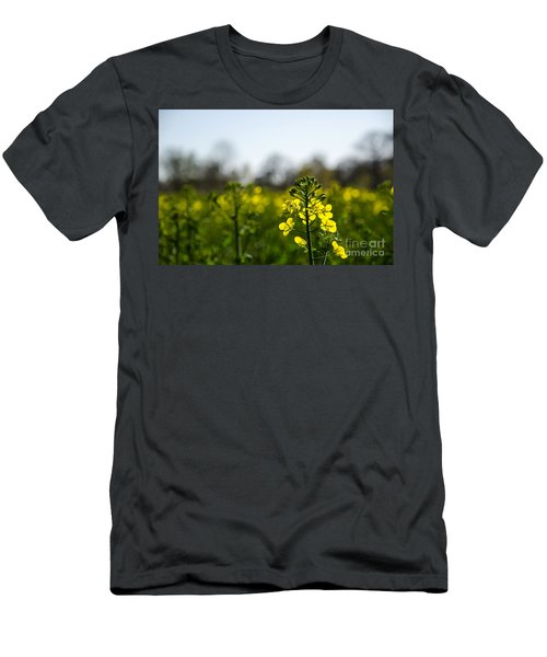 Backlit Canola Flower Men's T-Shirt (Athletic Fit)