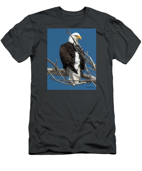 Bald Eagle Putting On The Ritz Men's T-Shirt (Slim Fit) by Stephen  Johnson