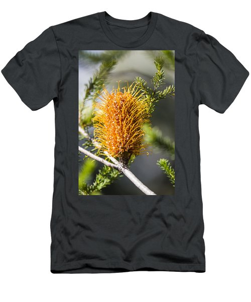 Banksia Men's T-Shirt (Athletic Fit)