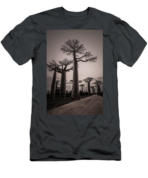 Baobab Avenue Men's T-Shirt (Athletic Fit)