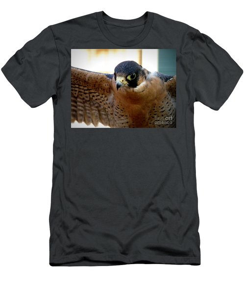 Barbary Falcon Wings Stretched Men's T-Shirt (Athletic Fit)