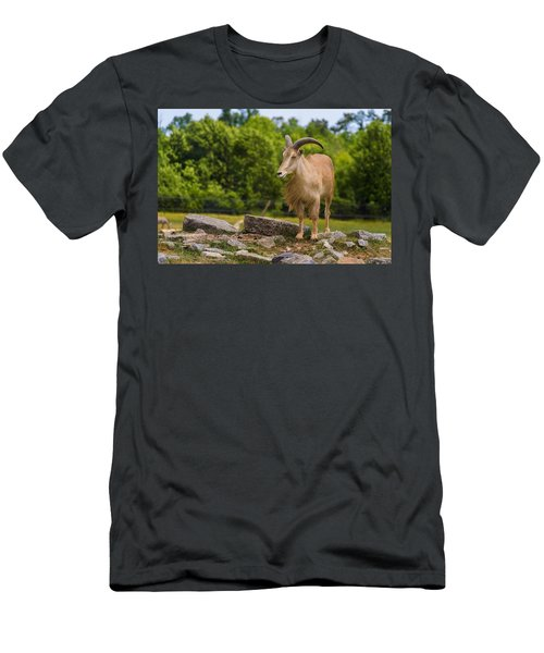 Men's T-Shirt (Athletic Fit) featuring the photograph Barbary Sheep by Garvin Hunter