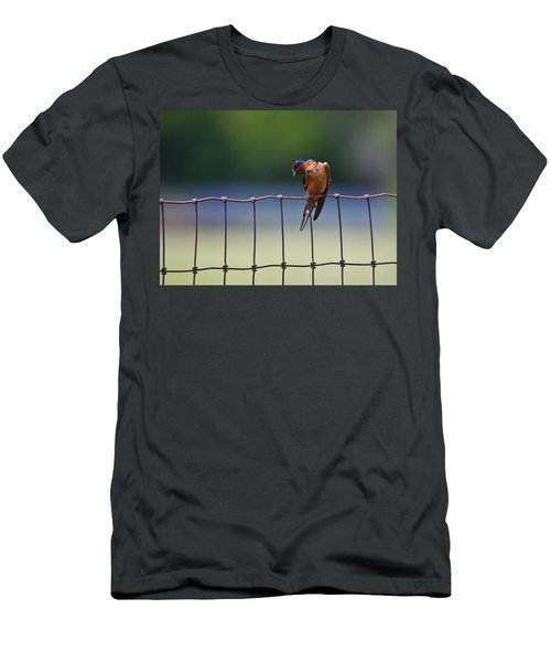 Barn Swallow Men's T-Shirt (Athletic Fit)