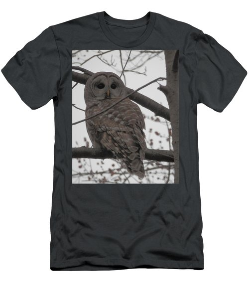 Men's T-Shirt (Slim Fit) featuring the photograph Barred Owl Perched by Emmy Marie Vickers