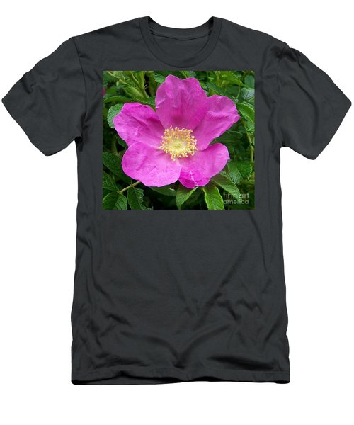 Pink Beach Rose Fully In Bloom Men's T-Shirt (Athletic Fit)