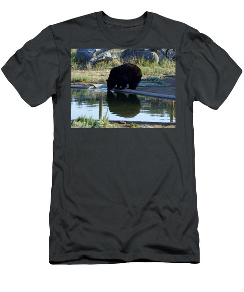 Bear 4 Men's T-Shirt (Athletic Fit)