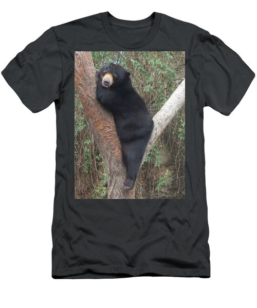 Bear In Tree   Men's T-Shirt (Athletic Fit)