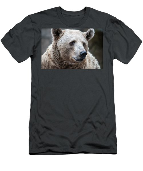 Bear Necessities Men's T-Shirt (Athletic Fit)