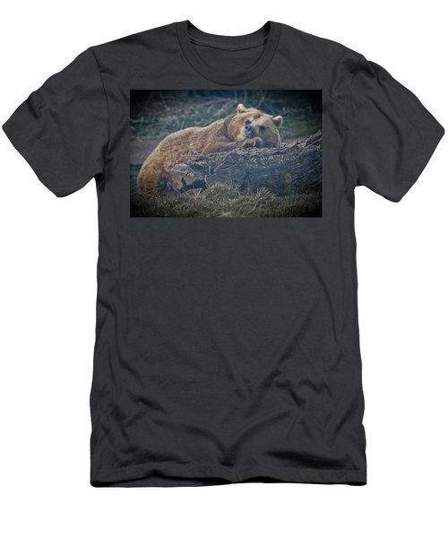 Bear On A Log Men's T-Shirt (Athletic Fit)