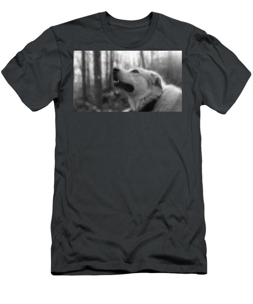 Bear Tooth Not Camera Shy Men's T-Shirt (Athletic Fit)