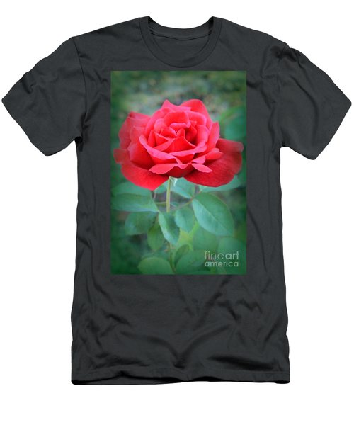 Beautiful Morning Rose  Men's T-Shirt (Athletic Fit)