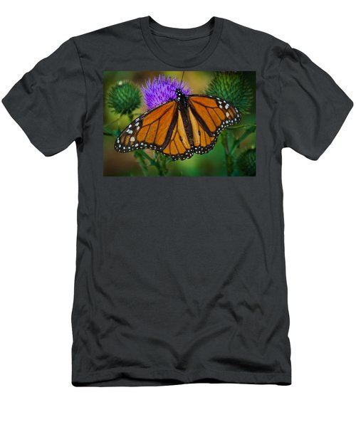 Beautifully Aged Men's T-Shirt (Athletic Fit)
