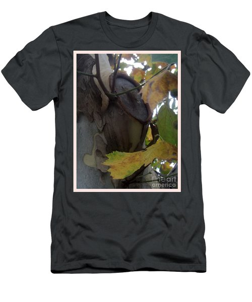 Beauty With Age Men's T-Shirt (Slim Fit) by Sara  Raber