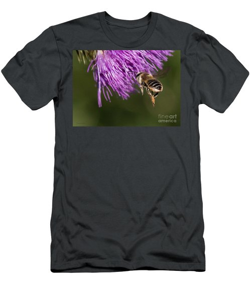 Bee Butt Men's T-Shirt (Athletic Fit)