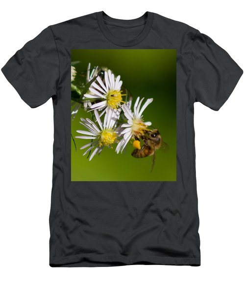 Bee Harvest Men's T-Shirt (Athletic Fit)