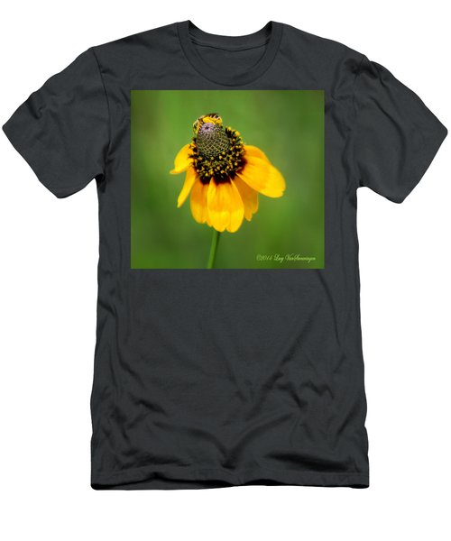 Bee My Coneflower Men's T-Shirt (Athletic Fit)