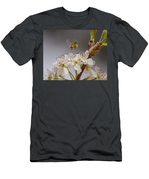 Bee Working The Bradford Pear 2 Men's T-Shirt (Athletic Fit)