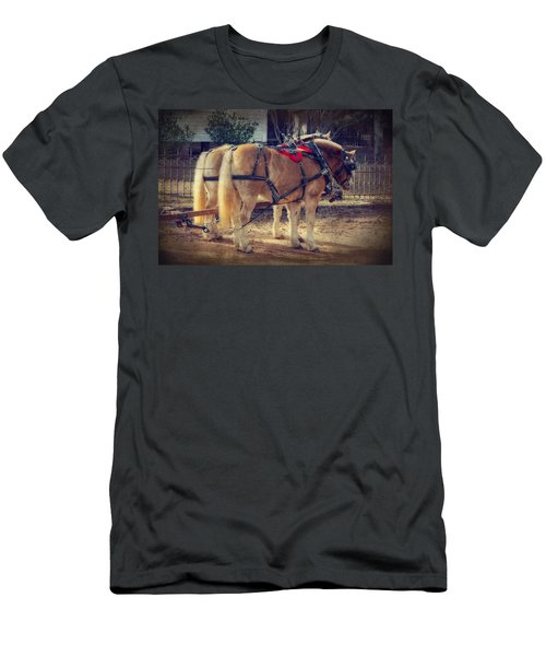 Belgium Draft Horses Men's T-Shirt (Slim Fit) by Charles Beeler