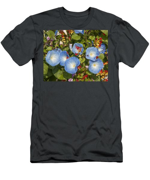 Bhubing Palace Gardens Morning Glory Dthcm0433 Men's T-Shirt (Athletic Fit)