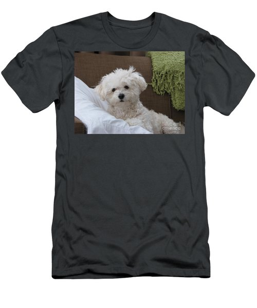 Molly 2 Men's T-Shirt (Athletic Fit)