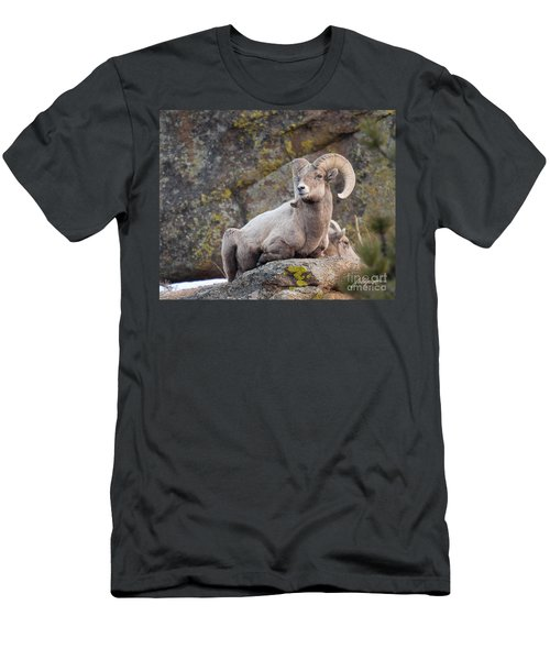 Big Horn Men's T-Shirt (Athletic Fit)