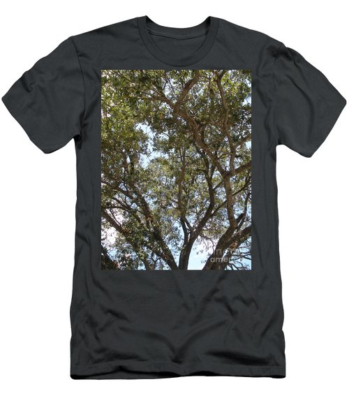 Big Oak Tree Men's T-Shirt (Athletic Fit)