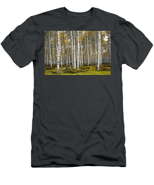 Aspen Trees In Autumn Men's T-Shirt (Athletic Fit)