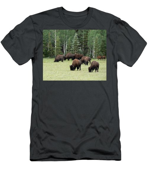 Bison At North Rim Men's T-Shirt (Athletic Fit)