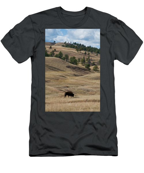 Bison Grazing Custer State Park South Men's T-Shirt (Athletic Fit)