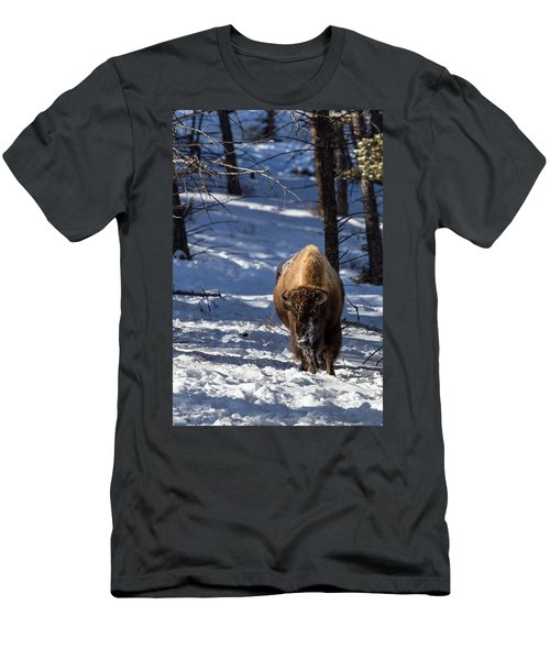 Bison In Winter Men's T-Shirt (Athletic Fit)