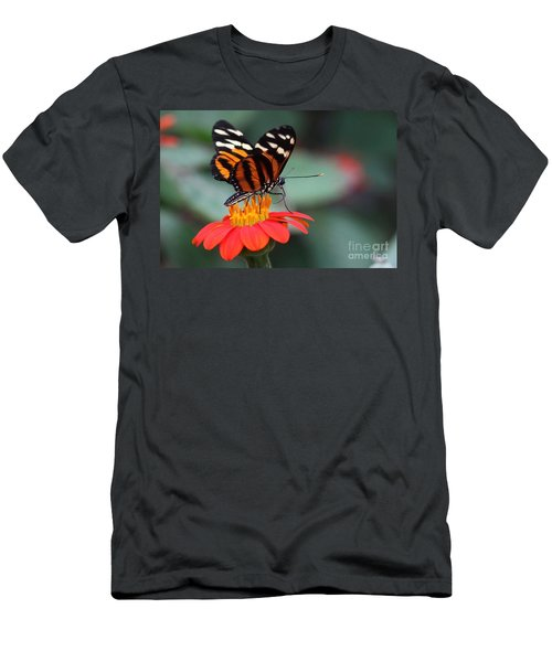 Black And Brown Butterfly On A Red Flower Men's T-Shirt (Athletic Fit)