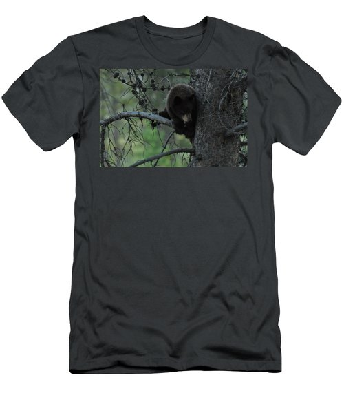 Black Bear Cub In Tree Men's T-Shirt (Athletic Fit)