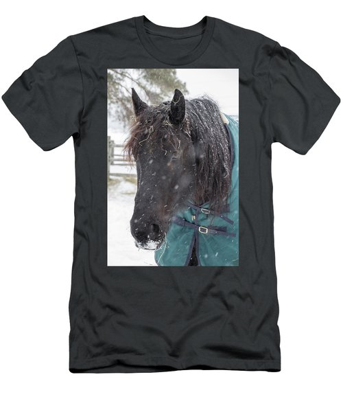 Black Horse In Snow Men's T-Shirt (Athletic Fit)