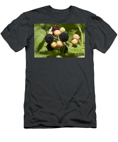 Black Raspberries Men's T-Shirt (Athletic Fit)