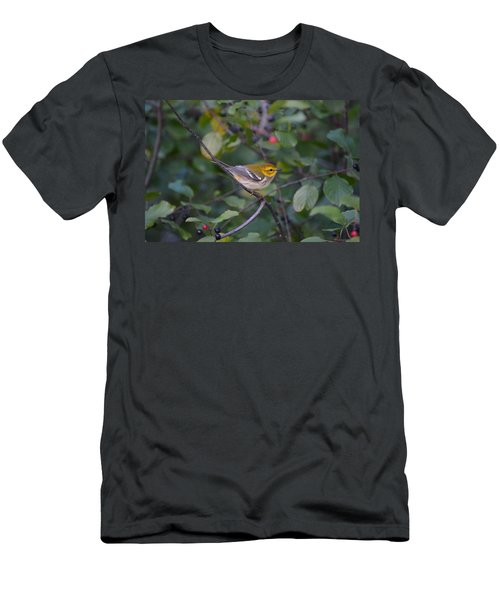 Men's T-Shirt (Slim Fit) featuring the photograph Black-throated Green Warbler by James Petersen
