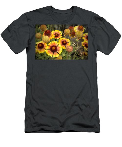 Men's T-Shirt (Athletic Fit) featuring the photograph Blanket Flowers  by Belinda Greb