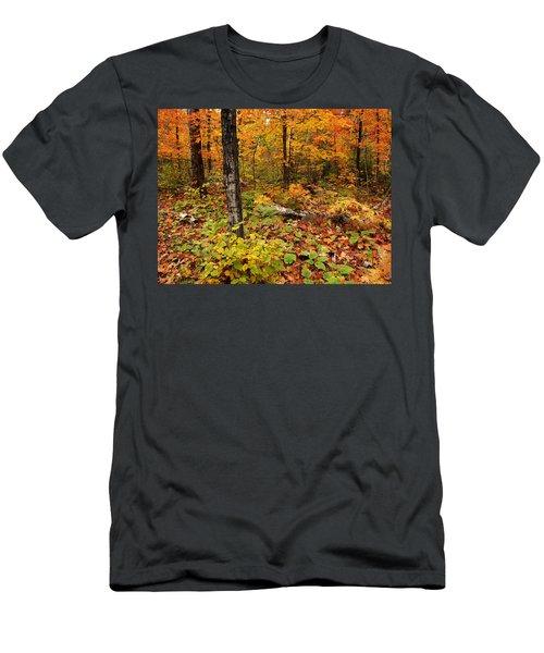 Blazing Forest Men's T-Shirt (Athletic Fit)