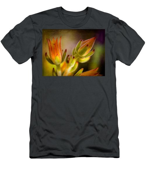 Blooming Succulents Iv Men's T-Shirt (Athletic Fit)