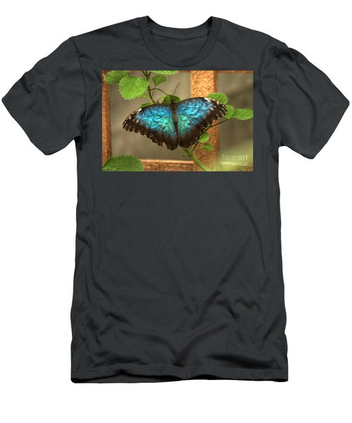 Blue And Black Butterfly Men's T-Shirt (Athletic Fit)