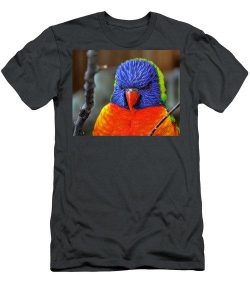 Blue Faced Rainbow Lorikeet Parrot Men's T-Shirt (Athletic Fit)