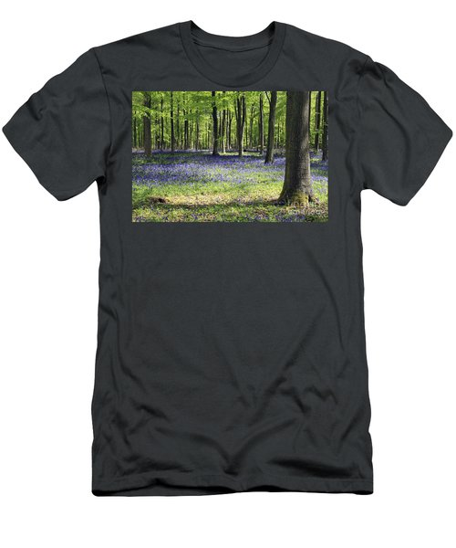 Bluebell Wood Uk Men's T-Shirt (Athletic Fit)