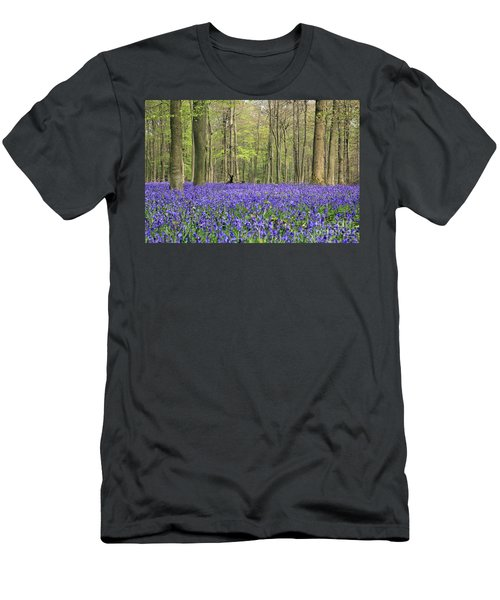 Bluebells Surrey England Uk Men's T-Shirt (Athletic Fit)