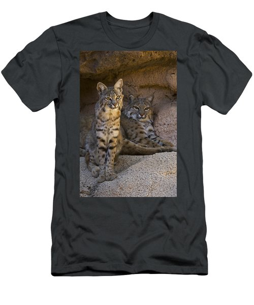 Men's T-Shirt (Slim Fit) featuring the photograph Bobcat 8 by Arterra Picture Library