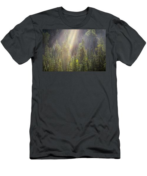 Boreal Morning Rays Men's T-Shirt (Athletic Fit)