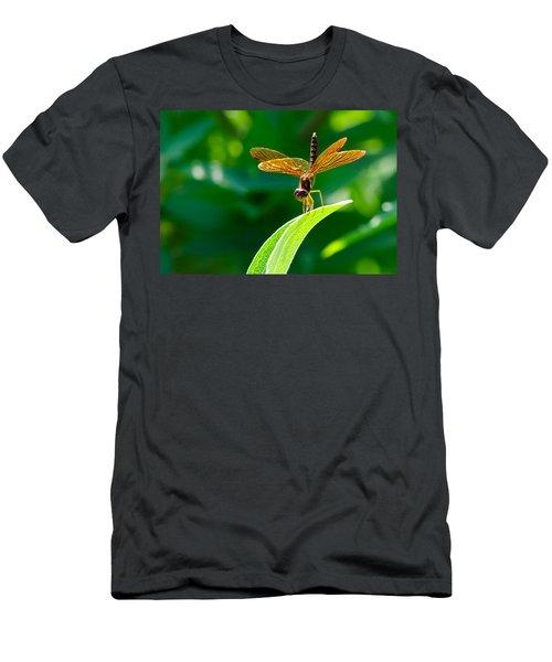 Bottoms Up Men's T-Shirt (Athletic Fit)