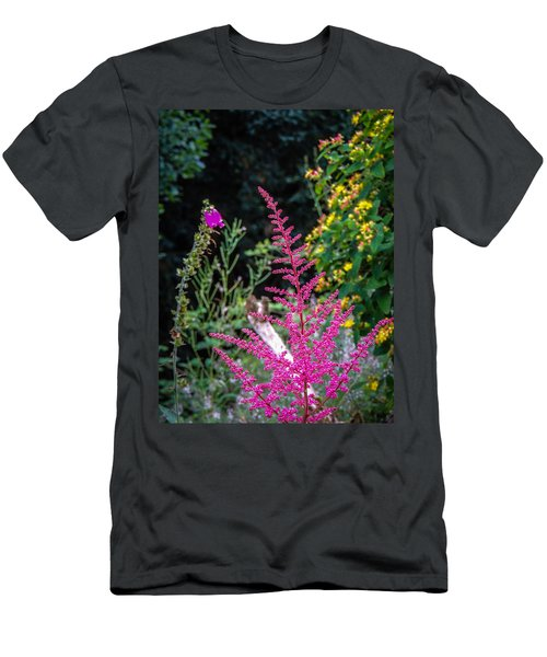 Brilliant Astilbe In Markree Castle Gardens Men's T-Shirt (Athletic Fit)