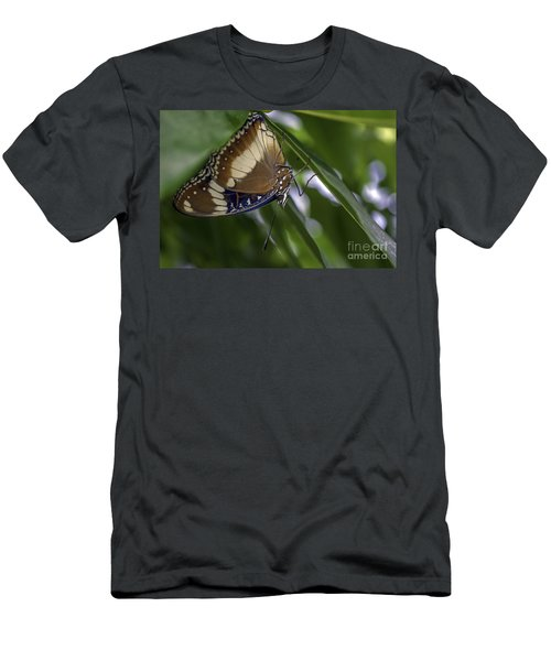 Brilliant Butterfly Men's T-Shirt (Athletic Fit)