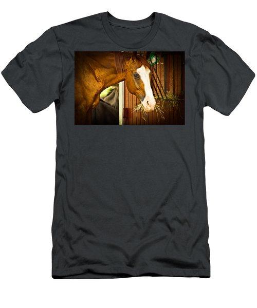 Brown Horse Men's T-Shirt (Athletic Fit)