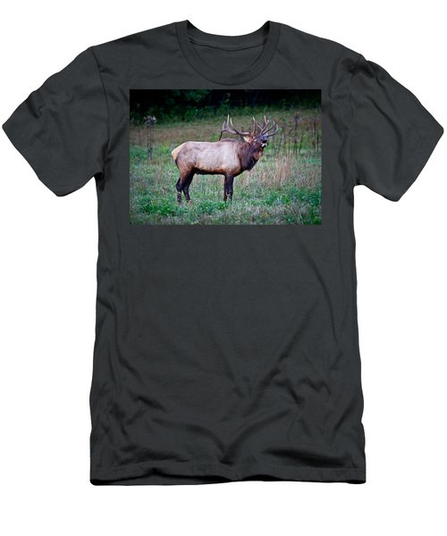 Men's T-Shirt (Slim Fit) featuring the photograph Bugle Solo From Bull Elk by John Haldane
